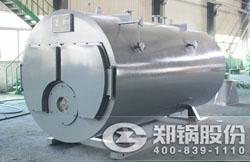 印度尼西亚WNS燃气锅炉项目
